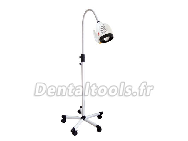 KWS® Lampe de diagnostic dentaire d'O.R.L KD-202B-8(2014) 20W