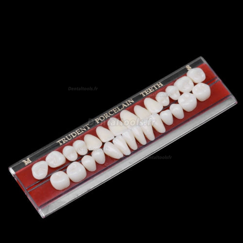 5PCS Porcelaine dentaire Dentiers matière de Alliage-Épingle couleur des dents plaque colorimétrique 1 ensemble 24 #
